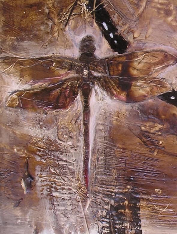 03 gran libelula